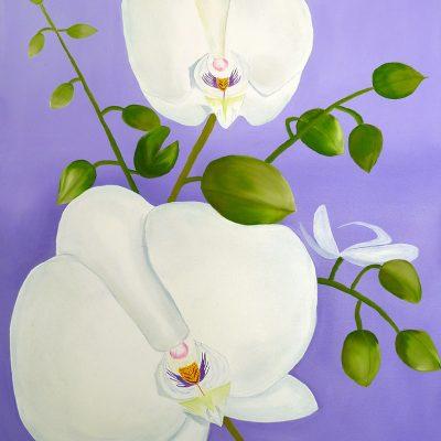 Weisse Orchidee, 2017, 60x80cm