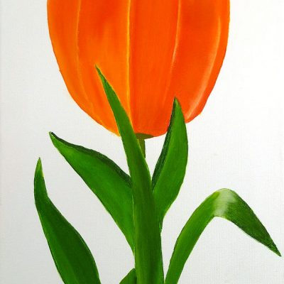 Tulpe, 2016, 40x60cm