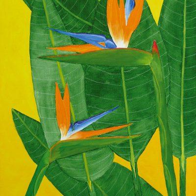Strelitze mit Blätter, 2016, 60x80cm