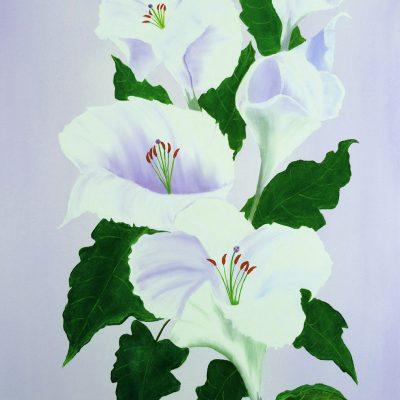 Lilien, 2015, 60x80cm