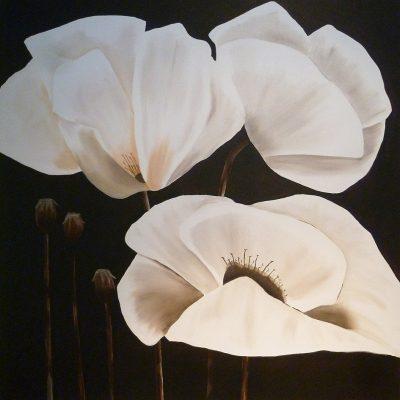 Drei Mohnblüten weiss, 2017, 80x80cm