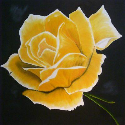 Gelbe Rose, 2017, 80x80cm